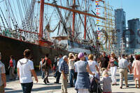 Four-masted barque Sedov